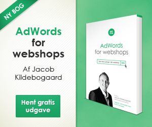 Ny AdWords bog
